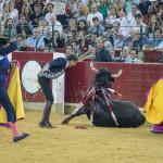 Novena_feria_2017_Zaragoza_feria_Del_Pilar29