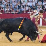 Octava_2017_Zaragoza_feria_Del_Pilar19