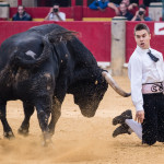 Recortes_2017_Zaragoza_feria_Del_Pilar15