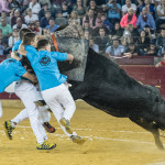 Roscaderos_2017_Zaragoza_feria_Del_Pilar9