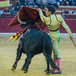 Tercera_Abono_Zaragoza_2017_Simon_Casas_Production25