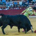 Tercera_Abono_Zaragoza_2017_Simon_Casas_Production26